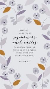 1 Peter 2 11